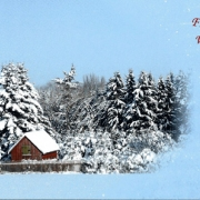frohe_advents-und_weihnachtsgruesse