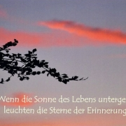 anteilnahme-meer-innen